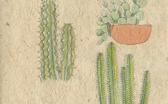 Sketchbook Tuesday: Cacti